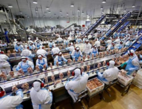 2018.12.11- Empresa frigorífica é condenada ao pagamento de horas extras por controle de jornada de comprador de bois externo.
